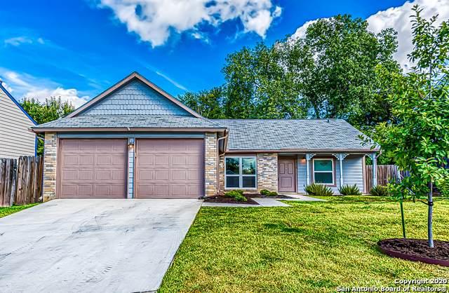 6815 Raintree Frst, San Antonio, TX 78233 (MLS #1473236) :: Alexis Weigand Real Estate Group