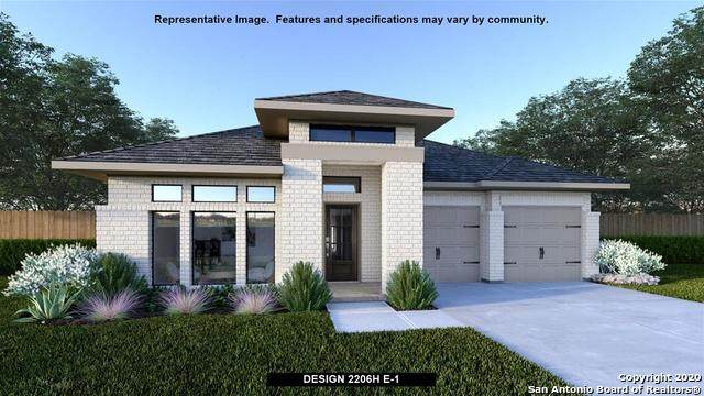 2149 Wildrye Lane, New Braunfels, TX 78132 (#1473282) :: The Perry Henderson Group at Berkshire Hathaway Texas Realty