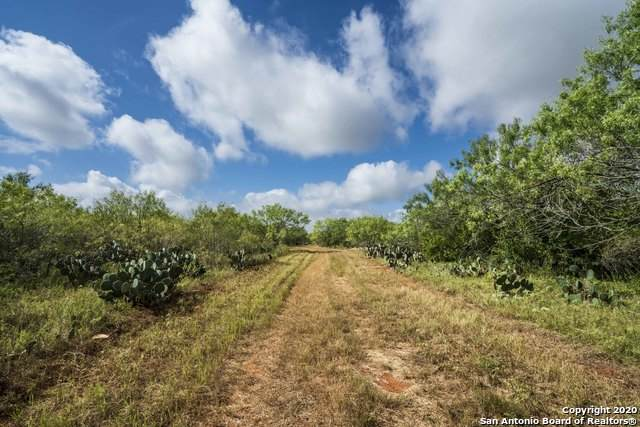 25 +/- ACRES S Sh 16, Jourdanton, TX 78026 (MLS #1473456) :: NewHomePrograms.com LLC