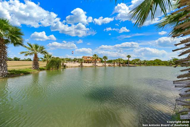 235 County Road 6716, Natalia, TX 78059 (MLS #1473484) :: Carter Fine Homes - Keller Williams Heritage