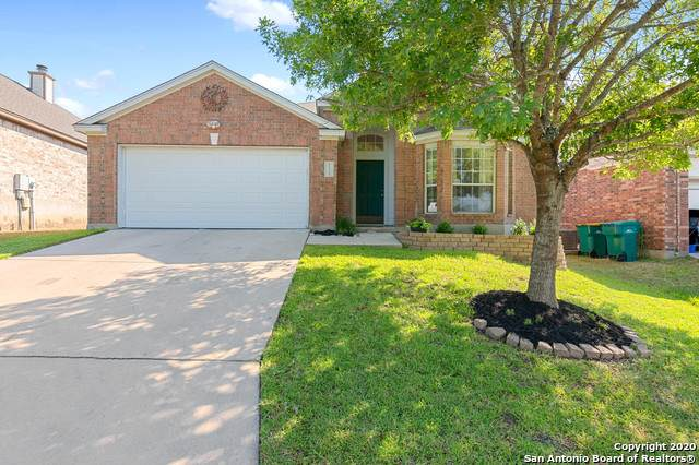 21250 Rio Sabinal, San Antonio, TX 78259 (MLS #1473568) :: Alexis Weigand Real Estate Group