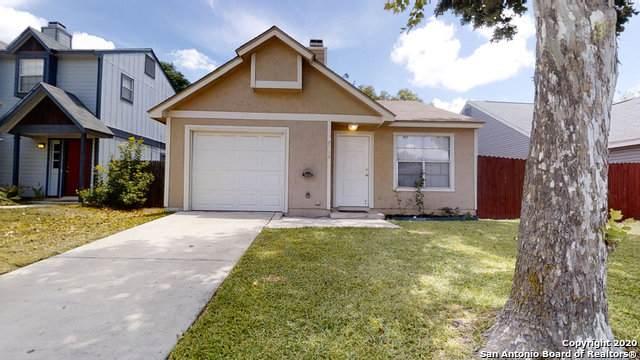 7542 Alverstone Way, San Antonio, TX 78250 (MLS #1473608) :: The Glover Homes & Land Group