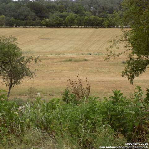 324#2 Waring Welfare, Boerne, TX 78006 (MLS #1473643) :: The Mullen Group | RE/MAX Access