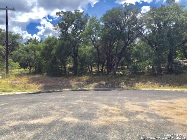 454 Pr 1706, Helotes, TX 78023 (MLS #1473695) :: The Castillo Group