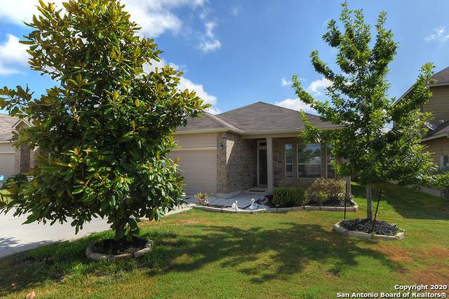823 Highland Vista, New Braunfels, TX 78130 (#1473701) :: The Perry Henderson Group at Berkshire Hathaway Texas Realty
