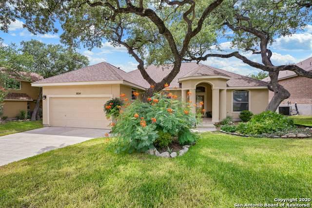 9014 Shade Tree, San Antonio, TX 78254 (MLS #1473800) :: NewHomePrograms.com LLC