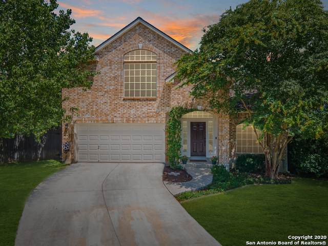 3339 Mineral Crk, San Antonio, TX 78259 (MLS #1473802) :: Alexis Weigand Real Estate Group