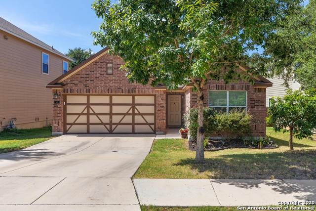 165 Desert Flower, Boerne, TX 78006 (MLS #1473865) :: Alexis Weigand Real Estate Group