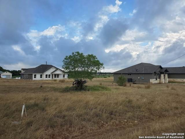 107 Antonio Perez, Blanco, TX 78606 (MLS #1473880) :: The Glover Homes & Land Group