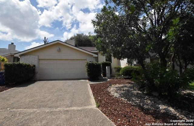 6525 Honey Hill, San Antonio, TX 78229 (MLS #1474019) :: Reyes Signature Properties