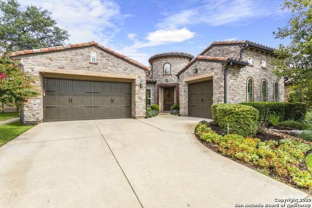 22218 Viajes, San Antonio, TX 78261 (MLS #1474072) :: The Castillo Group