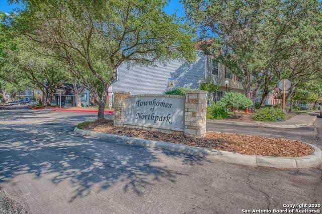 12269 Lemon Blossom, San Antonio, TX 78247 (MLS #1474162) :: The Real Estate Jesus Team