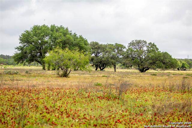 3546 Fm 1681, Stockdale, TX 78160 (MLS #1474210) :: REsource Realty