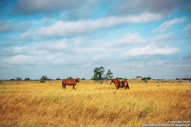 2492 Mangana-Hein Rd, Laredo, TX 78043 (MLS #1474217) :: The Lugo Group