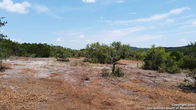 LOT 79 Pr 1715, Mico, TX 78056 (MLS #1474335) :: NewHomePrograms.com LLC