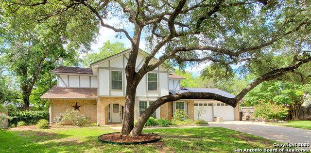 14110 Blue Smoke St, San Antonio, TX 78231 (MLS #1474380) :: The Heyl Group at Keller Williams