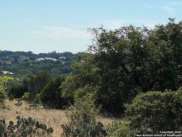 1347 (LOT 81) Bordeaux Ln, New Braunfels, TX 78132 (MLS #1474414) :: 2Halls Property Team | Berkshire Hathaway HomeServices PenFed Realty