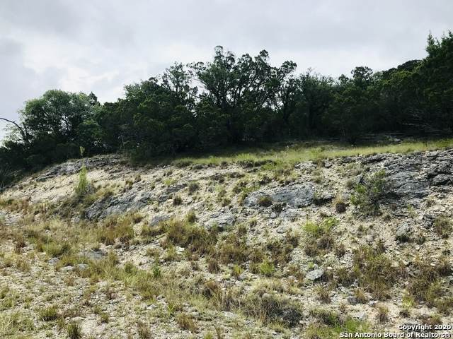 2920 Rocky Ridge Loop, Canyon Lake, TX 78133 (MLS #1474439) :: REsource Realty