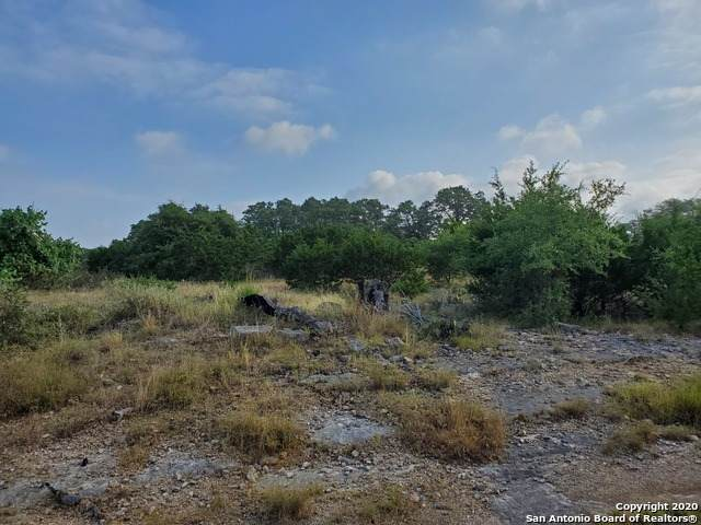 CORNER OF S Calvin Barrett & Joseph Lilley, Blanco, TX 78606 (MLS #1474469) :: The Glover Homes & Land Group