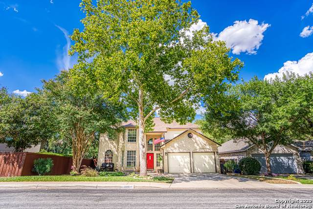13819 Chittim Meadows, San Antonio, TX 78232 (MLS #1474602) :: The Heyl Group at Keller Williams