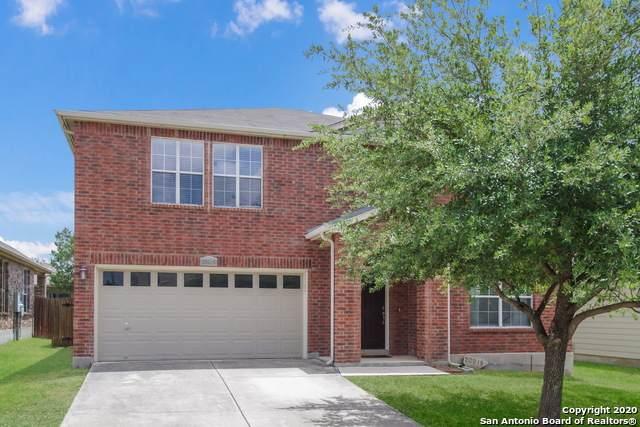 20918 Foothill Pine, San Antonio, TX 78259 (MLS #1474614) :: NewHomePrograms.com LLC