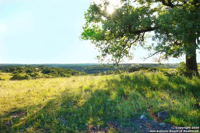 385 Casa Rd, Hunt, TX 78024 (MLS #1474741) :: Neal & Neal Team