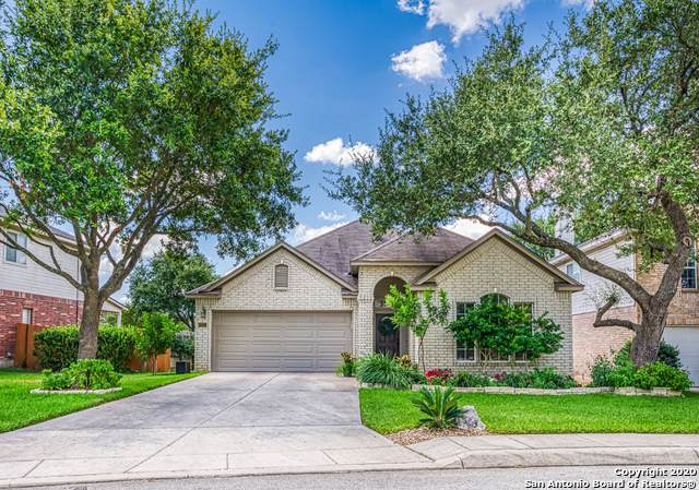 22223 Madison Park, San Antonio, TX 78260 (MLS #1475087) :: Alexis Weigand Real Estate Group