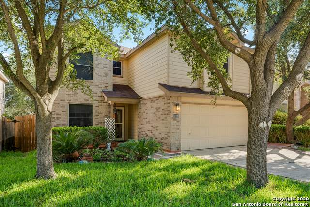 10119 Divine Breeze, San Antonio, TX 78251 (MLS #1475115) :: Neal & Neal Team