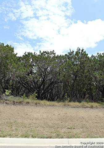 BLK 40 LOT 14 Ventura, Selma, TX 78154 (MLS #1475152) :: 2Halls Property Team | Berkshire Hathaway HomeServices PenFed Realty