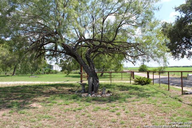 1185 County Road 773, Devine, TX 78016 (MLS #1475283) :: BHGRE HomeCity San Antonio