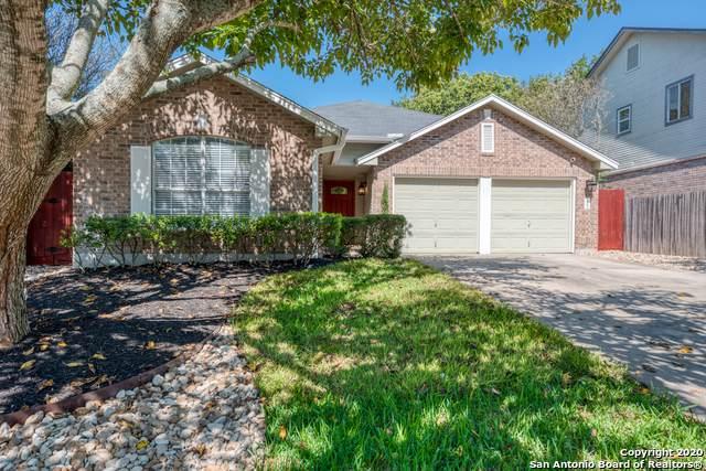 12231 Stable Fork Dr, San Antonio, TX 78249 (MLS #1475328) :: Reyes Signature Properties