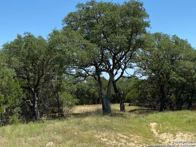 2124 (LOT 62) Andalusia, Canyon Lake, TX 78133 (MLS #1475905) :: Berkshire Hathaway HomeServices Don Johnson, REALTORS®