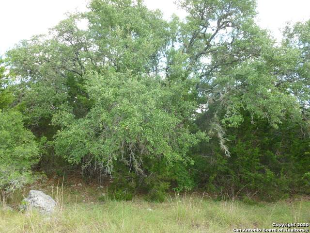 352 River Cliff Pl, Spring Branch, TX 78070 (MLS #1475984) :: The Glover Homes & Land Group