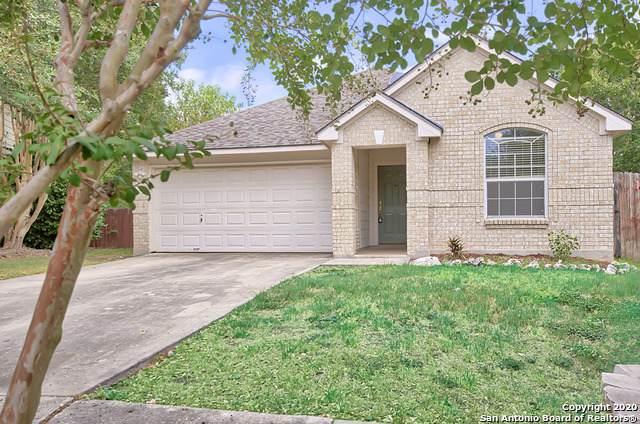 311 Spring Meadows, New Braunfels, TX 78130 (MLS #1476042) :: The Gradiz Group