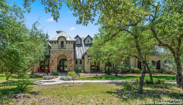 11206 Caliza Bluff, Boerne, TX 78006 (#1476644) :: 10X Agent Real Estate Team