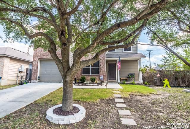 375 Copper Mtn, New Braunfels, TX 78130 (MLS #1476687) :: Vivid Realty