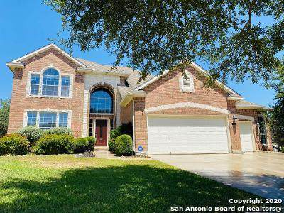 1950 Alpine Mist, San Antonio, TX 78258 (MLS #1476835) :: The Glover Homes & Land Group