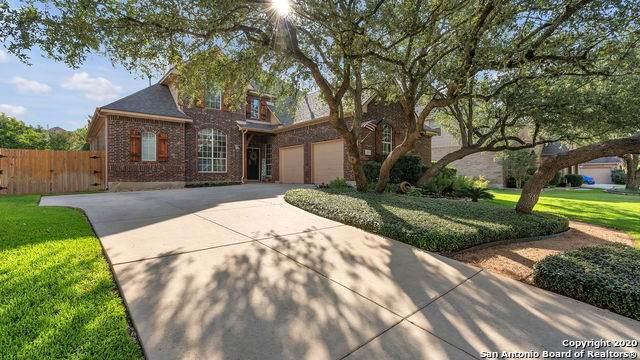 12823 Terrace Hollow, San Antonio, TX 78259 (MLS #1476837) :: NewHomePrograms.com LLC