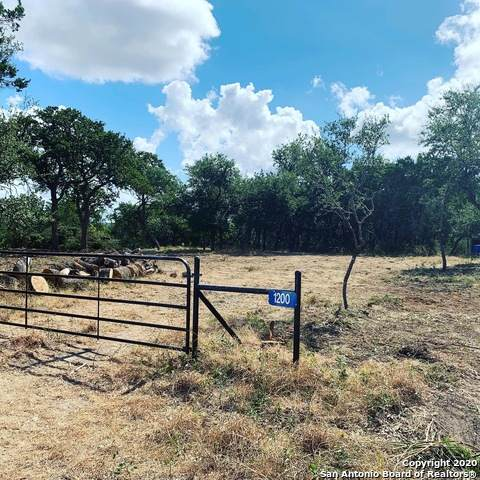 1200 Desert Gold, Boerne, TX 78006 (MLS #1476850) :: Alexis Weigand Real Estate Group