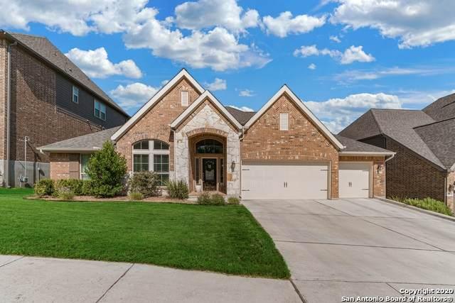 25820 Warbler View, San Antonio, TX 78255 (MLS #1476867) :: The Lugo Group