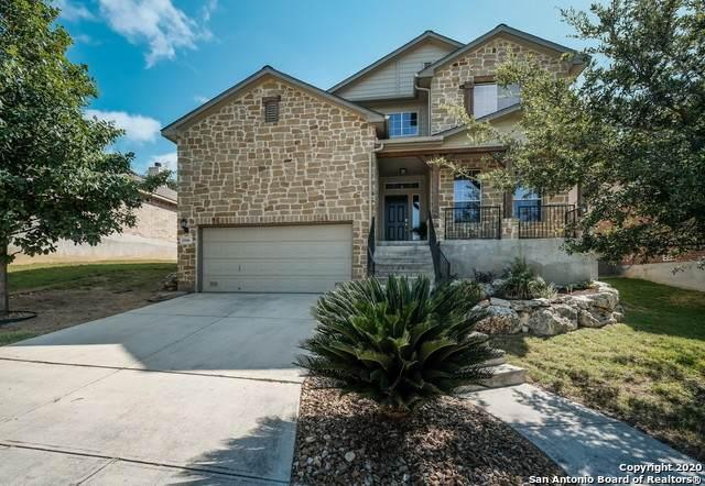 25606 Coral Vine, San Antonio, TX 78261 (#1476901) :: The Perry Henderson Group at Berkshire Hathaway Texas Realty