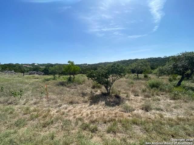 169 Cr 2814, Mico, TX 78056 (MLS #1477136) :: The Castillo Group