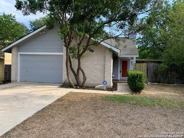 9619 Ivy Bend St, San Antonio, TX 78250 (MLS #1477295) :: Alexis Weigand Real Estate Group