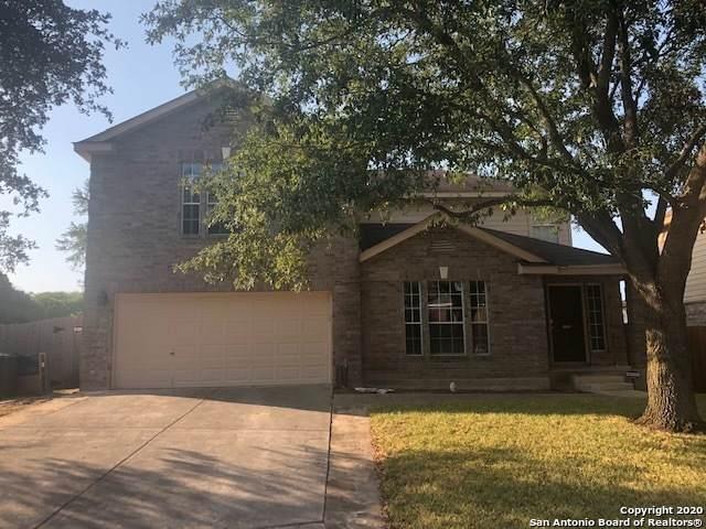 5438 Stormy Autumn, San Antonio, TX 78247 (MLS #1477333) :: The Castillo Group