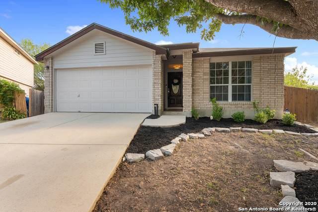 10503 Tiger Way, San Antonio, TX 78251 (MLS #1478124) :: The Castillo Group
