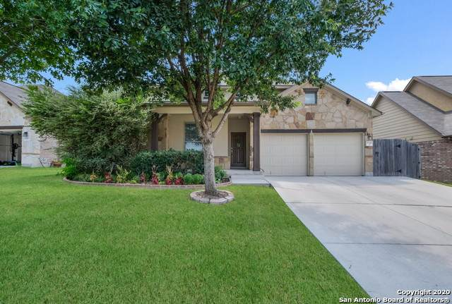 2046 Western Pecan, New Braunfels, TX 78130 (MLS #1478198) :: REsource Realty