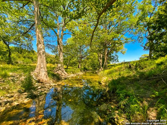 LOT 98 Sabinas Creek Ranch, Boerne, TX 78006 (MLS #1478498) :: Alexis Weigand Real Estate Group