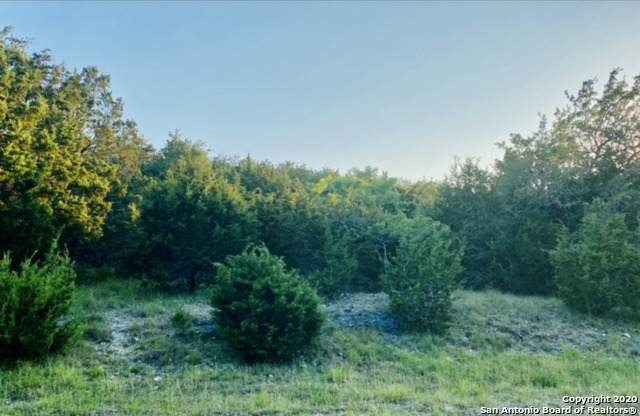 179 Crestview Ln, Spring Branch, TX 78070 (MLS #1478563) :: Concierge Realty of SA