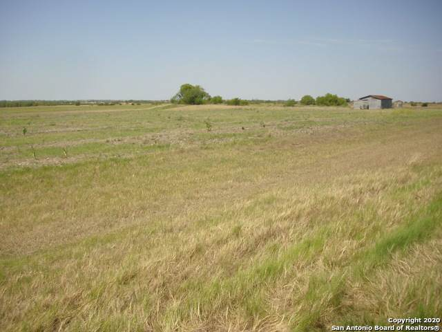 2381 S Graytown Rd, Converse, TX 78109 (MLS #1478720) :: The Castillo Group