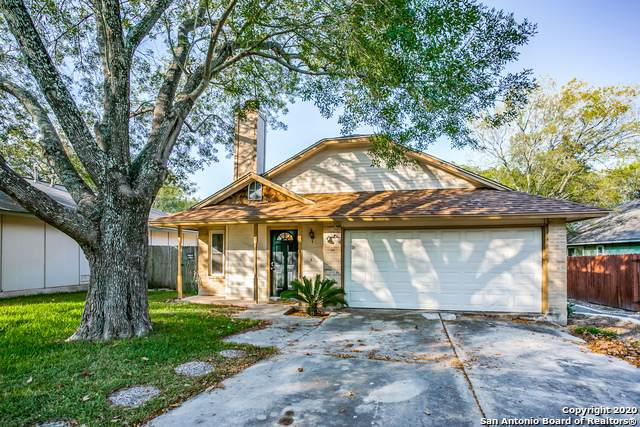 3646 Stoney Meadow St, San Antonio, TX 78247 (MLS #1479394) :: EXP Realty